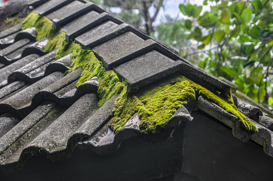 A close up from the side of a black metal roof